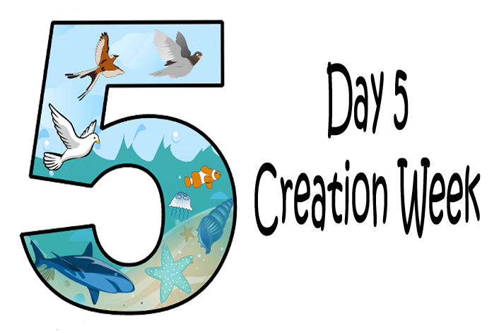 5_day 5 creation week furthermore coloring page noah and family on noah animals coloring pages as well as crab coloring page on noah animals coloring pages in addition noah rainbow coloring page on noah animals coloring pages as well as noah animals coloring pages 4 on noah animals coloring pages