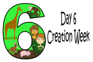 6_Day 6 Creation Week