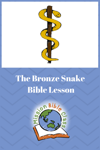 The Bronze Snake on a Pole Pin